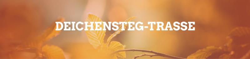 Gruene-FFB_Themenseite_Deichensteg
