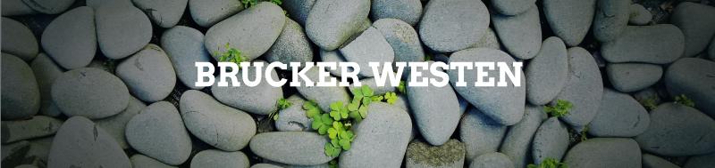 Gruene-FFB_Themenseite_Brucker-Westen