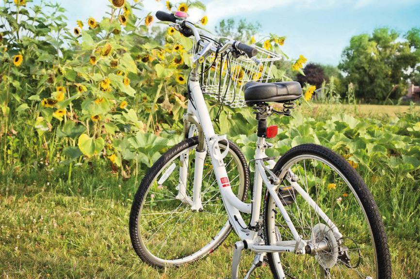 Mobilitaet_Fahrrad